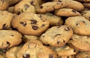les domaines cookieless et le reférencement naturel seo